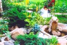 Фото - Шляхетний сад