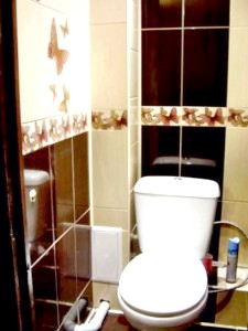 Фото - Рекомендації до планування інтер'єру маленького туалету, і фото дизайнерських рішень