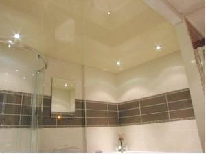 Фото - Види стель у ванній кімнаті і туалеті: огляд достоїнств і відео інструкція монтажу