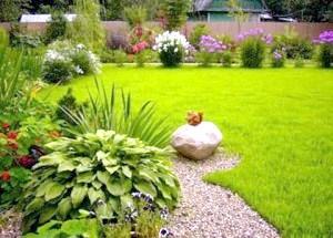 Фото - Хочете отримати ідеальну галявину за місяць - стелите рулонний газон