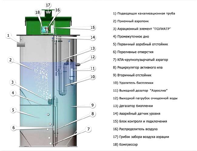 Фото - Як побудувати туалет на дачі