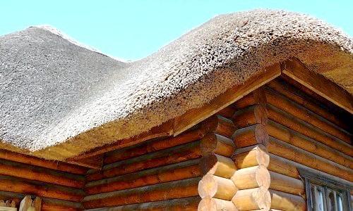 Фото - Очеретяний дах: особливості, гідності, технологія укладання
