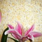 Текстура рідких шпалер фото