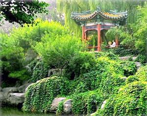 Фото - Створюємо китайський сад - відкриваємо душу світу