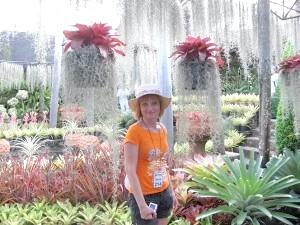 Фото - Тропічний сад Нонг Нуч - один з найбільших і прекрасних ботанічних садів світу