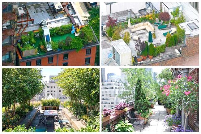 Фото - Вибираємо покрівлю для ділянки на даху будинку