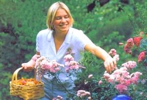 Фото - Осінній догляд за садовими трояндами: як правильно підготувати квіти до зими