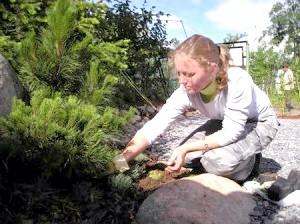 Фото - Правильний догляд за грунтом на дачній ділянці - запорука щедрих врожаїв