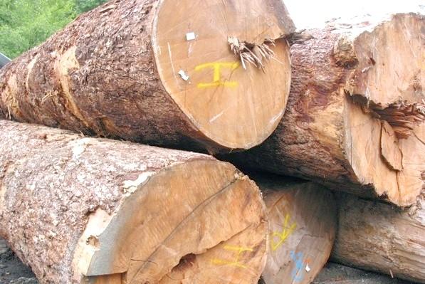 Фото - Просочення для дерева: виготовлення своїми руками