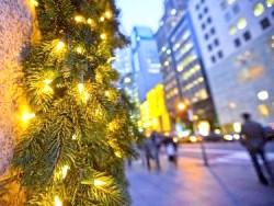 Фото - Як правильно підключити новорічну гірлянду на вулиці