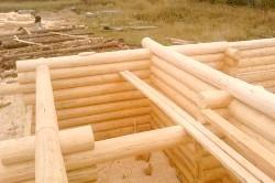 Будівництво будинку з оциліндрованих колод