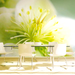 Фотошпалери з квітами в інтер'єрі кухні